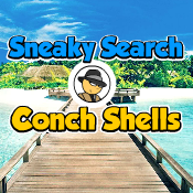 Sneaky Search Conch Shells